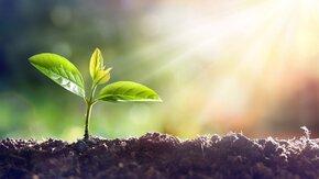 5 december: World Soil Day - Herstel de bodem, red het klimaat