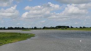 Natuurinclusief ontwerp: IJsseldelta-Zuid