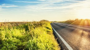 Grassap als duurzaam alternatief voor strooizout: proef op N504 in aantocht