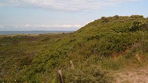 Beheerplannen Natura 2000 Kust en zee