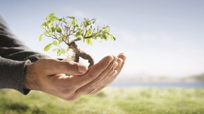 Prinsjesdag-analyse: extra investeringsruimte vraagt wel om duurzamere kaders