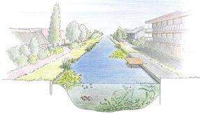 Monitoring biodiversiteit en waterkwaliteit stadswateren beheergebied HDSR