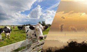 Akkoord bereikt over nieuwe stikstofwet