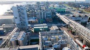 Tauw ondersteunt Sime Darby Oils bij transitie naar nieuwe ISO 14001:2015