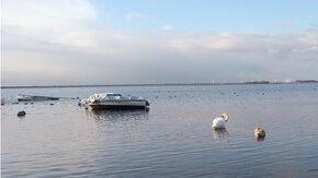 Watersysteemrapportage Randmeren Oost