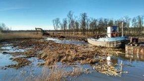 Tauw past Risicogestuurde Uitvoeringsbegeleiding toe op LIFE-C3 project Naardermeer
