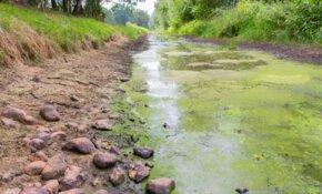 Stresstest landelijk gebied: naar een robuustere droogte- en overlastbestendige inrichting