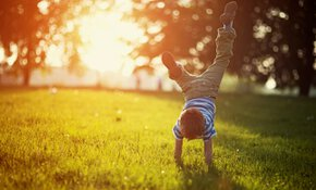 Vitale bodems: essentieel voor ons voortbestaan