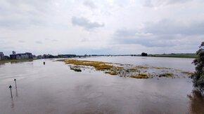 Overstromingen bieden kansen voor de ecologie