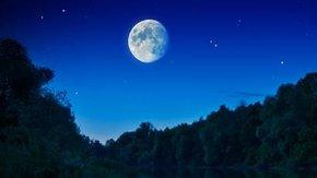 Elke dag verdient een Nacht van de Nacht