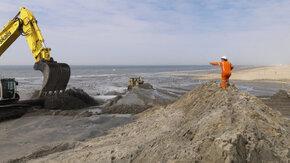 Ecologische advisering kunstlijnzorg suppletieprogramma Rijkswaterstaat