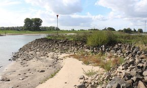 Rijkswaterstaat gunt krib- en oeververlaging Pannerdensch Kanaal Aan Ploegam B.V
