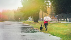 Symposium Climate Adaptation Northern Netherland: Tauw verzorgt lezing over klimaat en stad