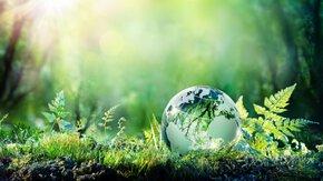 Carbon footprinting voor verantwoord investeren